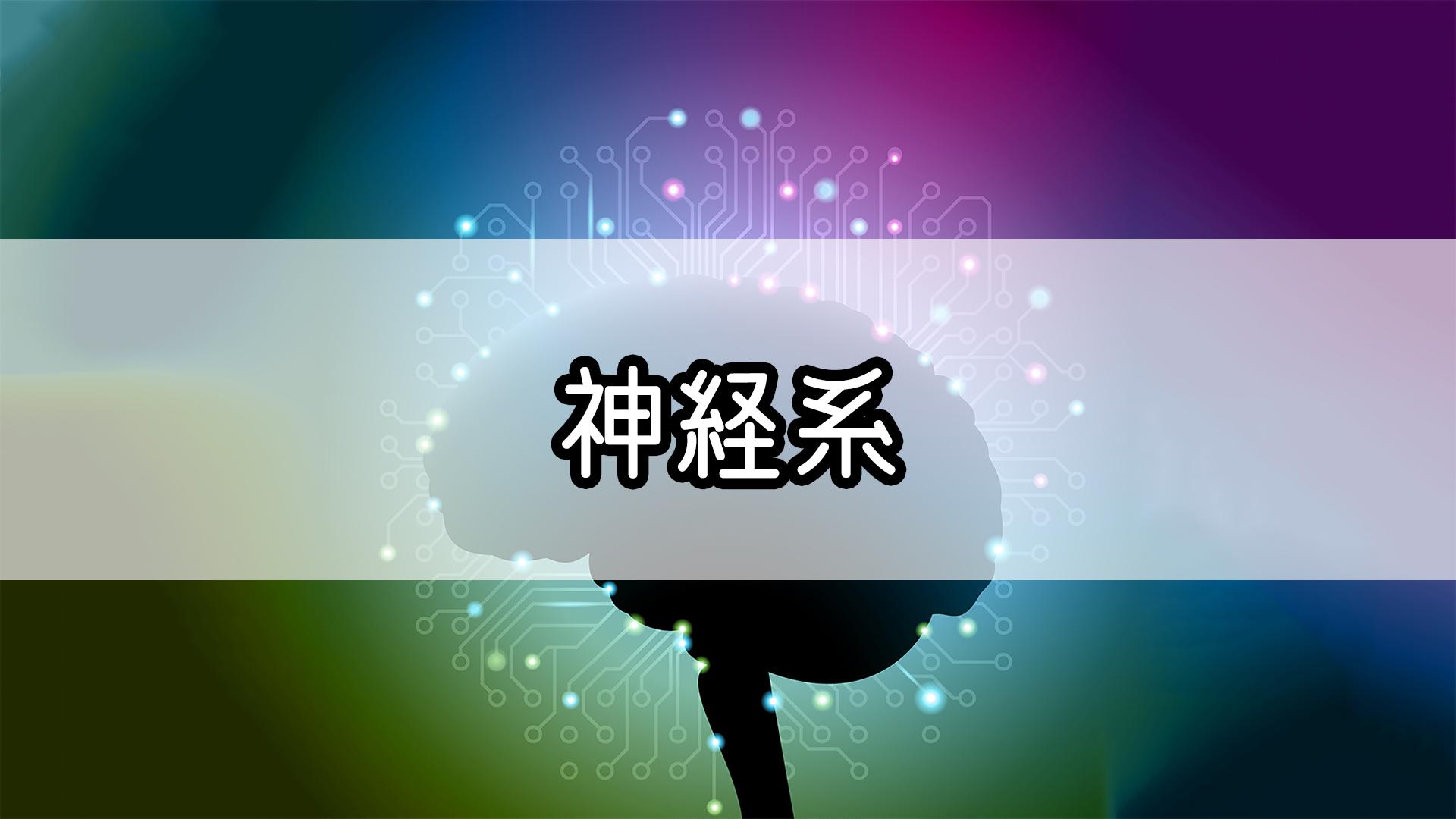 『神経系』のゴロ・覚え方
