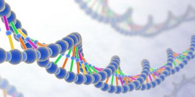 『遺伝子機能の解析技術』のゴロ・覚え方